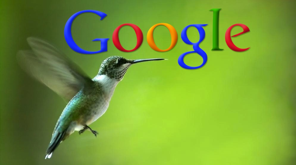 Should You Be Worried About Google Hummingbird?