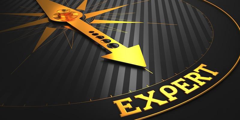 Business Blog Expert